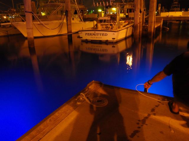 glow coupon light dock lights deep lighting reviews underwater green